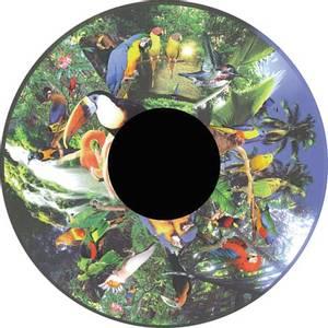 Bilde av Solar effekthjul tropiske fugler push on