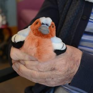 Bilde av Fugl dompap